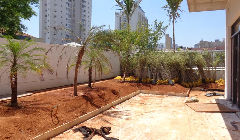 Área Externa - Plantio